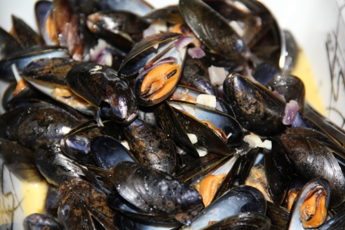 Mussels_IMG_5330