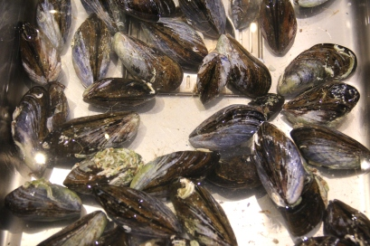 Mussels_IMG_5374